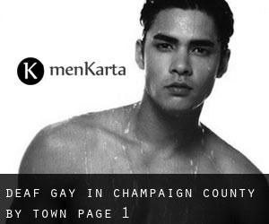 Deaf Gay in Champaign County by Town - page 1
