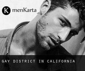 Gay District in California