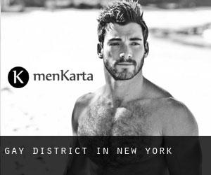 Gay District in New York