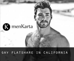 Gay Flatshare in California
