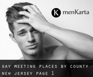 Gay Meeting Places by County (New Jersey) - page 1