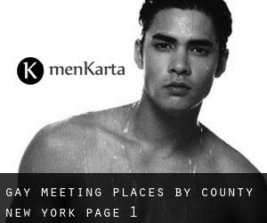 Gay Meeting Places by County (New York) - page 1