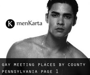 Gay Meeting Places by County (Pennsylvania) - page 1