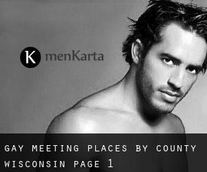Gay Meeting Places by County (Wisconsin) - page 1